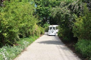 Tour de petit train dans les jardins du château de Fontainebleau
